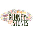 the kidney stones miracle cure text background vector image vector image