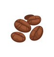 coffee beans isolated roasted grains sketch vector image
