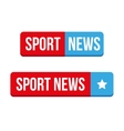 Sport News button vector image