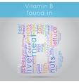 Vitamin B info-text background vector image