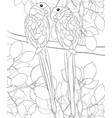 adult coloring bookpage a pair of parrots in love vector image