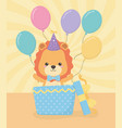 birthday card with little lion character vector image