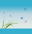 dragonflies flying over grass and blue summer vector image vector image