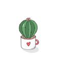 hand drawn cactus in garden pottery vector image vector image