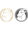 handdrawn goat in hatched round frame isolated on vector image