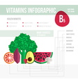 Vitamine infographic vector image vector image