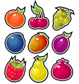 yummy fruits vector image