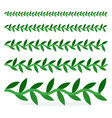 ivy plants various sizes in a row flat isolated vector image vector image