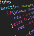 Page with php code vector image vector image