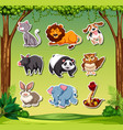 set of different animals stickers vector image