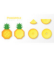 set of pineapples in paper art style vector image