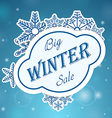 Big whinter sale on snowflake vector image vector image