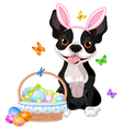 Boston terrier with Easter basket vector image vector image