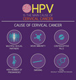 cervical cancer icon logo vector image vector image