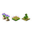 garden plants and flowers game user interface vector image vector image