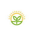 sprout leaf circle sun logo vector image