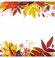 autumn season floral watercolor card with leaves vector image vector image
