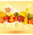 colourful autum leaves in a horizontal border styl vector image