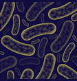 micro bacterium background vector image vector image