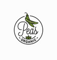 peas vegetable logo round linear green pea vector image