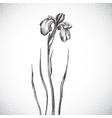 Flower Black and white Dotwork vector image vector image