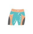 sport shorts vector image vector image