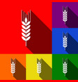 wheat sign spike spica set vector image vector image