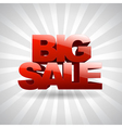 3D text Big sale vector image