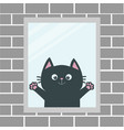 black cat in the window house brick wall open vector image