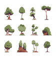 cartoon trees flat fairytale detailed graphic vector image vector image