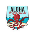 octopus with surfboard vector image