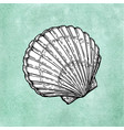 scallop ink sketch vector image vector image