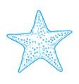 hand drawn marine starfish vector image