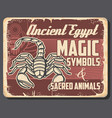 ancient egyptian scorpion and scarab beetle vector image