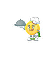 chef with food gold coin cartoon character for vector image vector image
