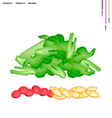 Chopped Pok Choi with Vitamin K and Vitamin A vector image vector image