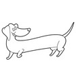 cute cartoon long dachshund vector image vector image