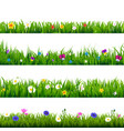 grass and flowers border set vector image