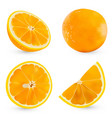 set realistic whole orange and half orange vector image