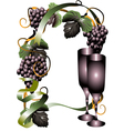 wine glasses and vine vector image vector image