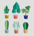 house plants set icons vector image