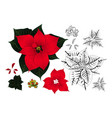 red poinsettia outline vector image