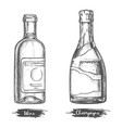 alcohol drink bottles sketch wine and champagne vector image vector image