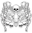 beautiful elf with ram and human skull wings vector image