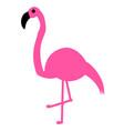 elegant pink flamingo vector image