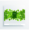 green leaves card cover background vector image vector image