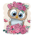 owl with flowers on a white background vector image vector image