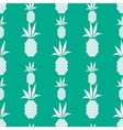 White pineapple pattern vector image vector image