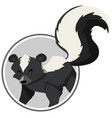 a skunk sticker template vector image vector image
