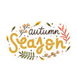autumn season composition with colorful hand drawn vector image vector image